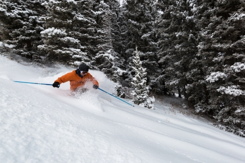Skier in fresh powder at Purgatory.