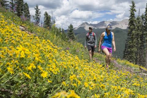 A couple hikes through wildflowers at Purgatory Resort.