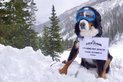 Parker The Snow Dog Announces Opening Day at Loveland Ski Area