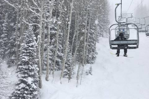 Fresh Snow at Steamboat Springs