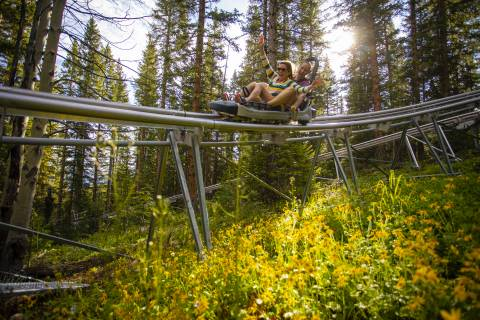 Aspen Alpine Slide