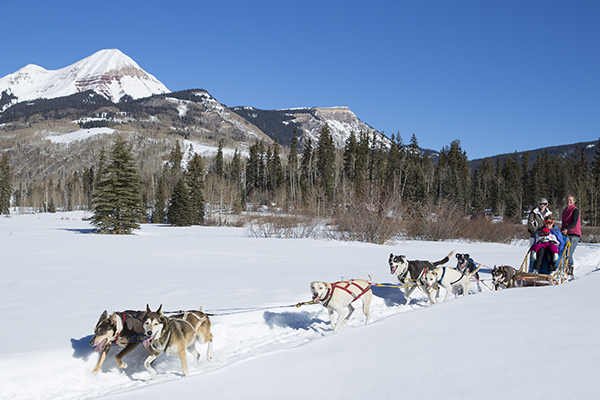 Dog Sledding at Purgatory Resort